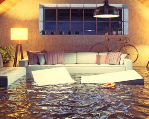 How to Prevent Water from Damaging Your Home Anytime Flood Restoration Denver
